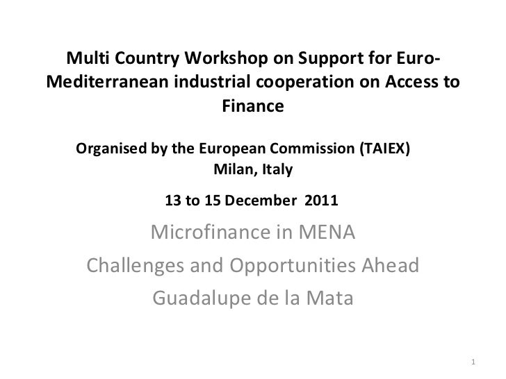 Multi Country Workshop on Support for Euro-Mediterranean industrial cooperation on Access to Finance Organised by the Euro...