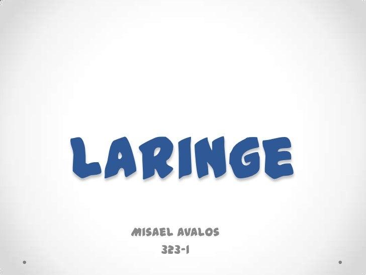Laringe <br />Misael Avalos<br />323-1<br />