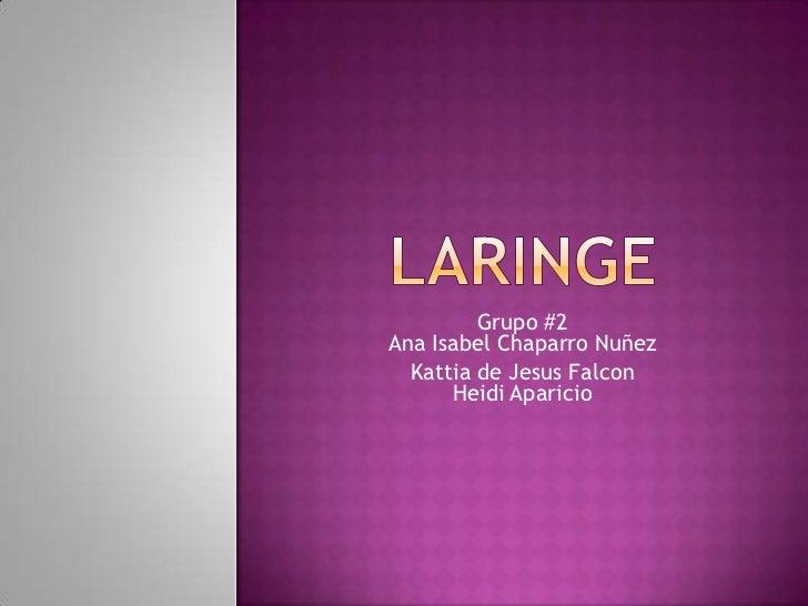 Grupo #2Ana Isabel Chaparro Nuñez  Kattia de Jesus Falcon      Heidi Aparicio