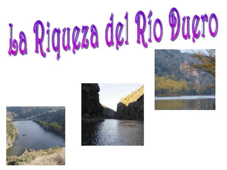 La Riqueza del Río Duero