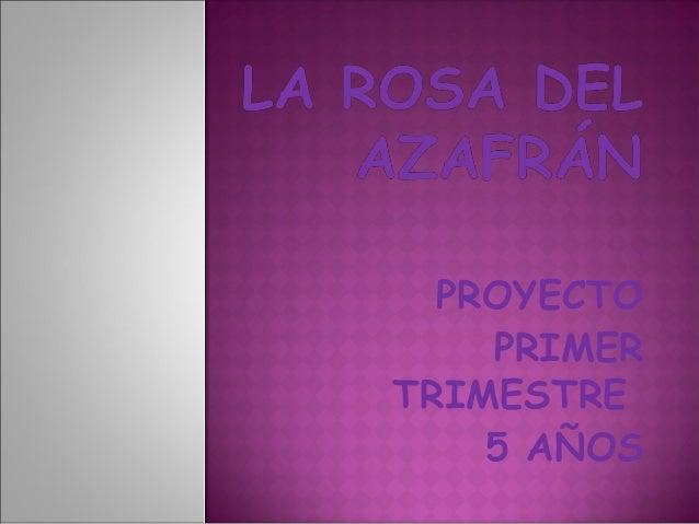 PROYECTO  PRIMER  TRIMESTRE  5 AÑOS