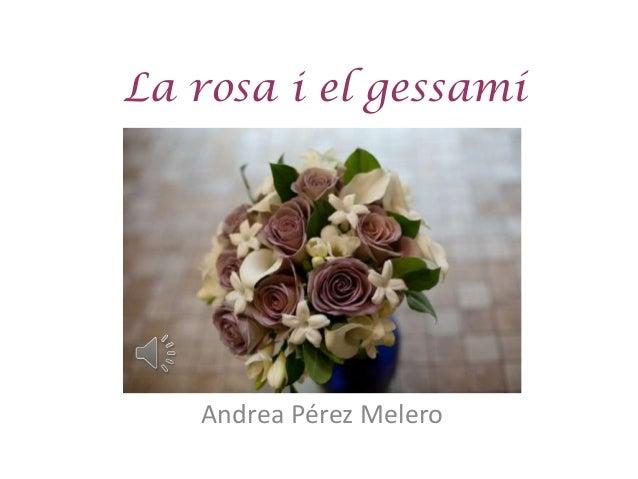 La rosa i el gessamí   Andrea Pérez Melero