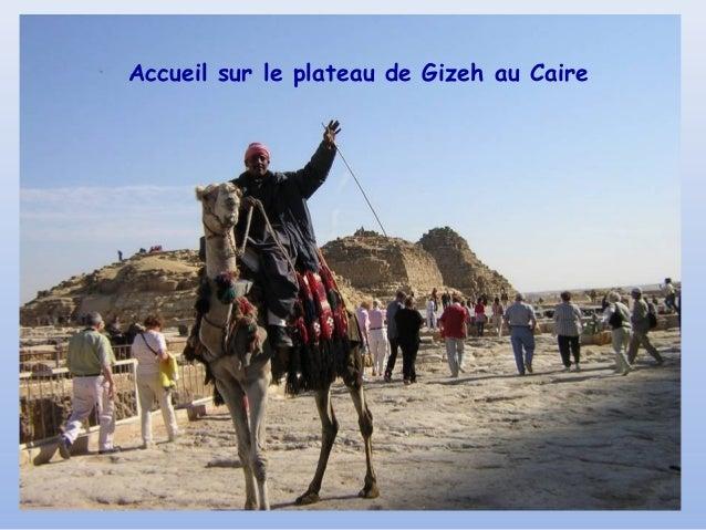 Accueil sur le plateau de Gizeh au Caire