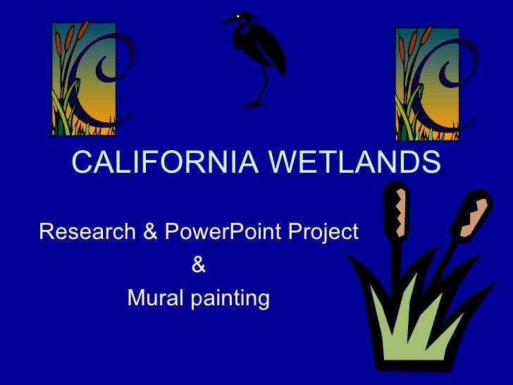 CALIFORNIA WETLANDS Research & PowerPoint Project & Mural painting