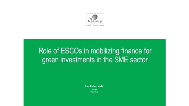 WWW.SIGRAGROUP.COM Role of ESCOs in mobilizing finance for green investments in the SME sector Lars Petter Lunden Partner ...