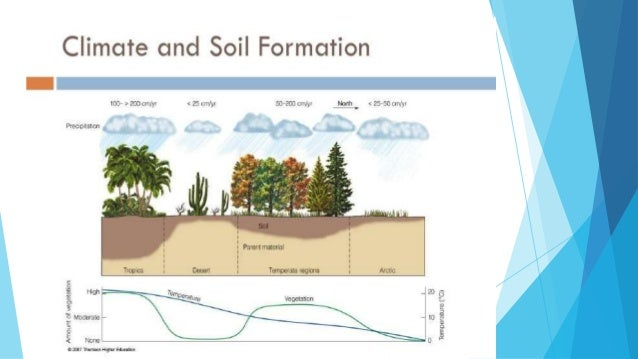 How soil are formed for Soil 4 climate