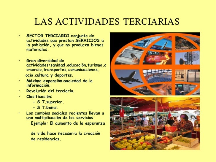 Las actividades terciarias for Actividades que se realizan en una oficina wikipedia