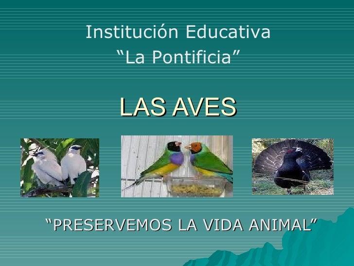 "LAS AVES "" PRESERVEMOS LA VIDA ANIMAL"" Institución Educativa "" La Pontificia"""