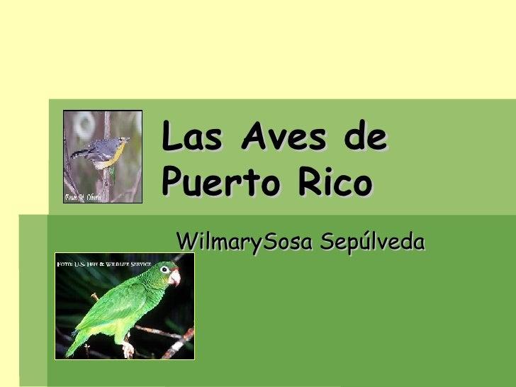 Las Aves de    Puerto Rico  WilmarySosa Sepúlveda
