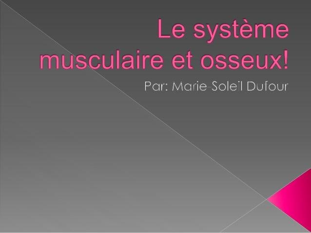  Le systèmes musculaire : Dans notre corps on na plus de 600 muscles. C'est se qui nous permet de fait des mouvements. Le...