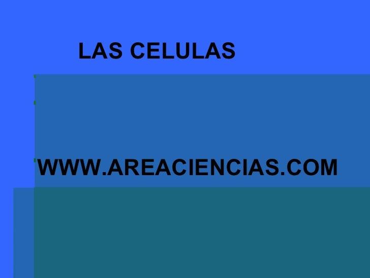 WWW.AREACIENCIAS.COM LAS CELULAS