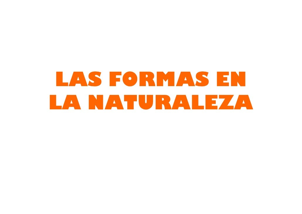 LAS FORMAS EN LA NATURALEZA