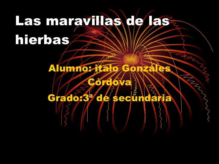 Las maravillas de las hierbas Alumno: italo Gonzáles Córdova Grado:3ª de secundaria