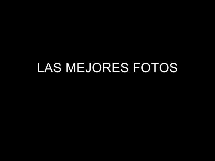 LAS MEJORES FOTOS