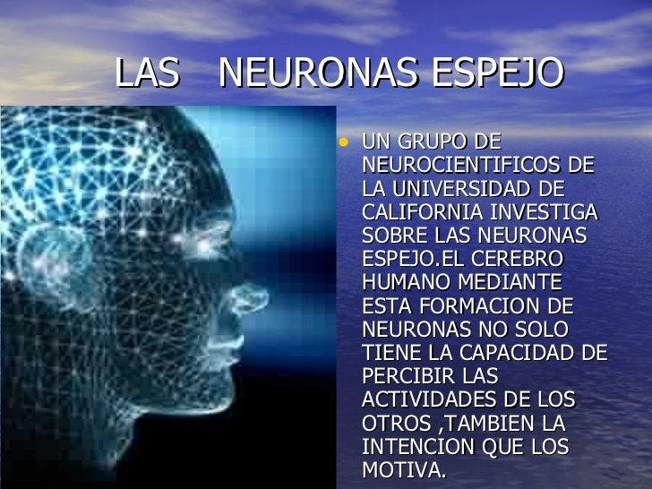 LAS  NEURONAS ESPEJO <ul><li>UN GRUPO DE NEUROCIENTIFICOS DE LA UNIVERSIDAD DE CALIFORNIA INVESTIGA SOBRE LAS NEURONAS ESP...
