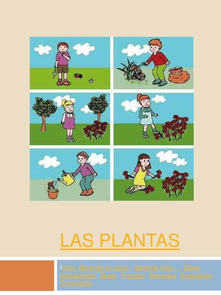 LAS PLANTAS Inicio Aprende un poco Aprende más   Sigue Introducción Tarea Proceso Recursos Evaluación Conclusión