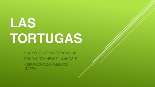 LAS TORTUGAS PROYECTO DE INVESTIGACIÓN EDUCACIÓN INFANTIL 3 AÑOS B CEIP PEDRO DE VALENCIA .ZAFRA