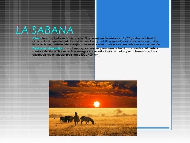 LA SABANAClima: Seco tropical y subtropical, este clima se encuentra entre los 15 y 25 grados de latitud. Elciclo de las t...