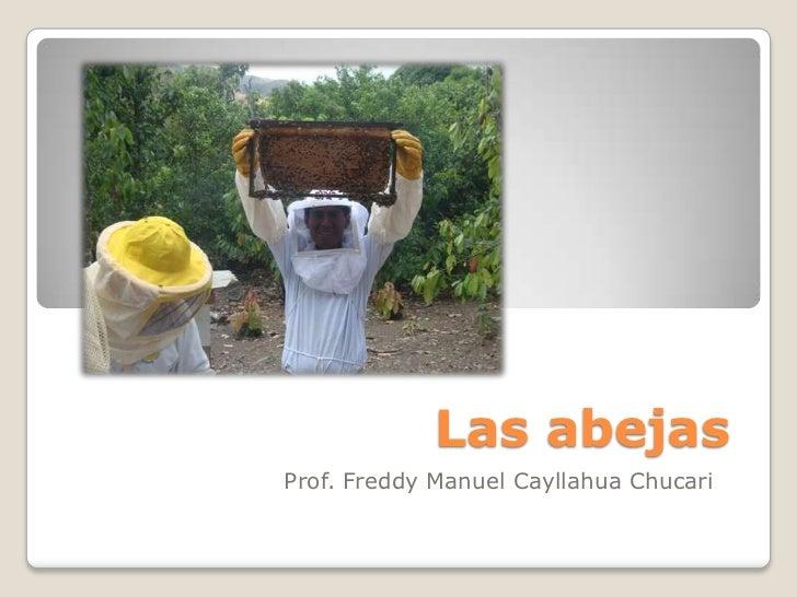 Las abejasProf. Freddy Manuel Cayllahua Chucari