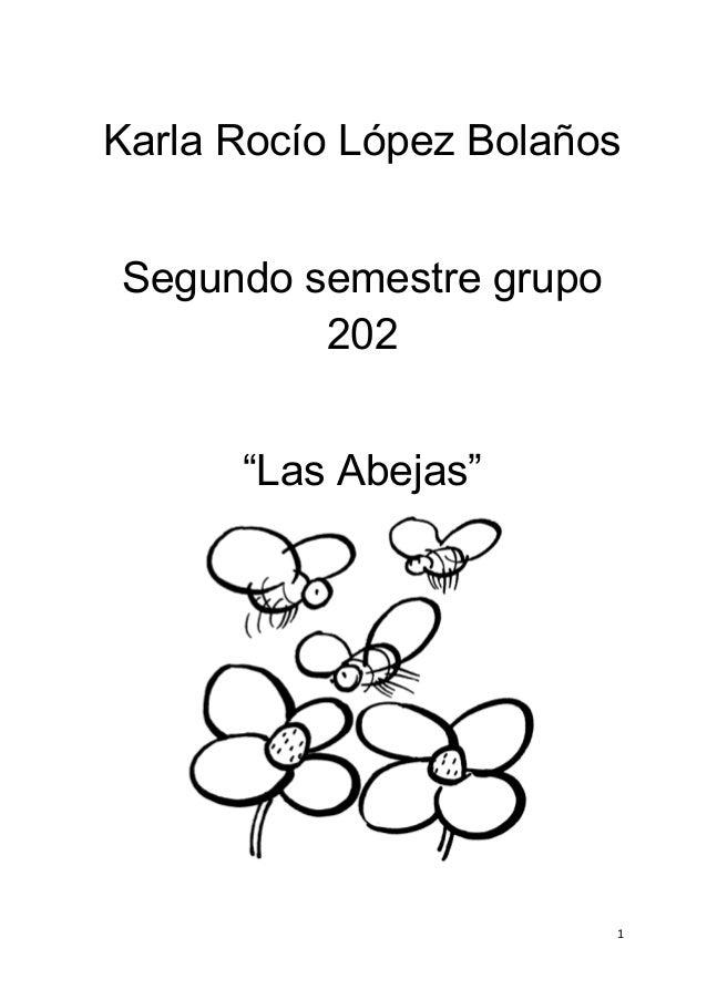 "Karla Rocío López Bolaños Segundo semestre grupo 202 ""Las Abejas"" 1"