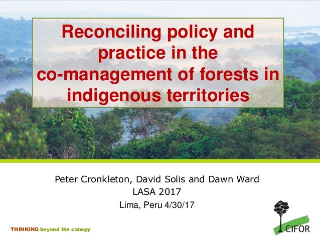 THINKING beyond the canopy Reconciling policy and practice in the co-management of forests in indigenous territories Peter...