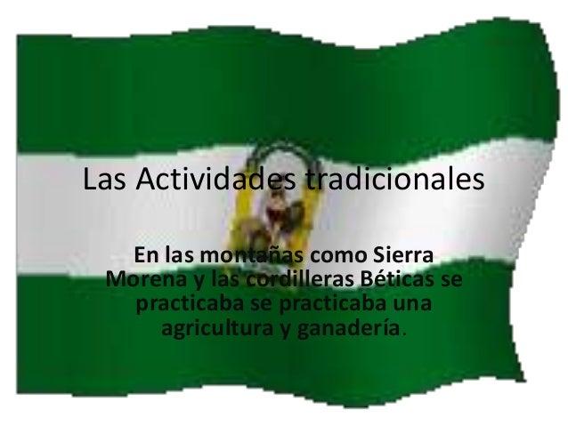 Las Actividades tradicionales En las montañas como Sierra Morena y las cordilleras Béticas se practicaba se practicaba una...