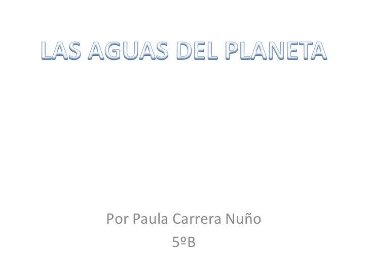 LAS AGUAS DEL PLANETA<br />Por Paula Carrera Nuño<br />5ºB<br />