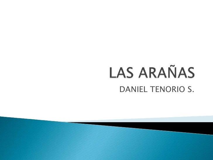 LAS ARAÑAS<br />DANIEL TENORIO S.<br />