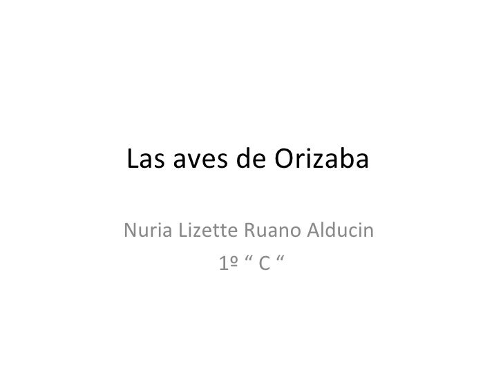"""Las aves de Orizaba  Nuria Lizette Ruano Alducin  1º """" C """""""