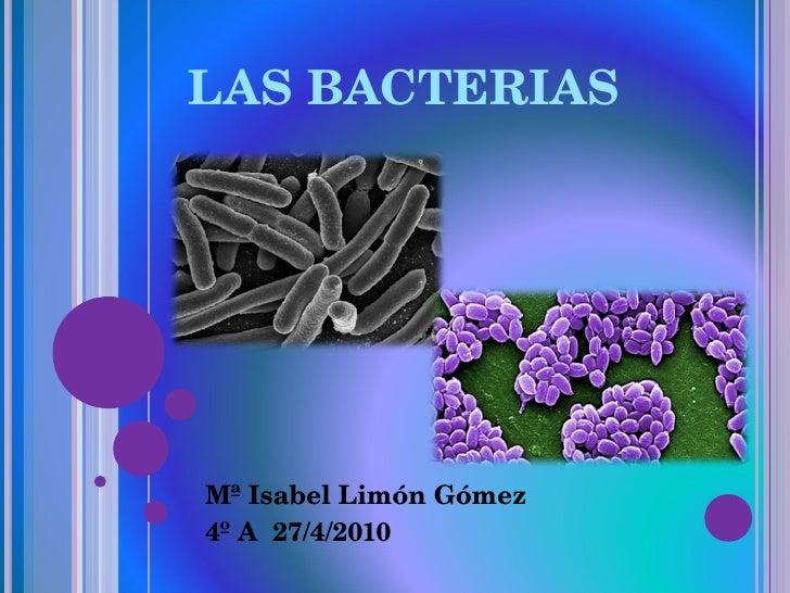 LAS BACTERIAS Mª Isabel Limón Gómez 4º A  27/4/2010