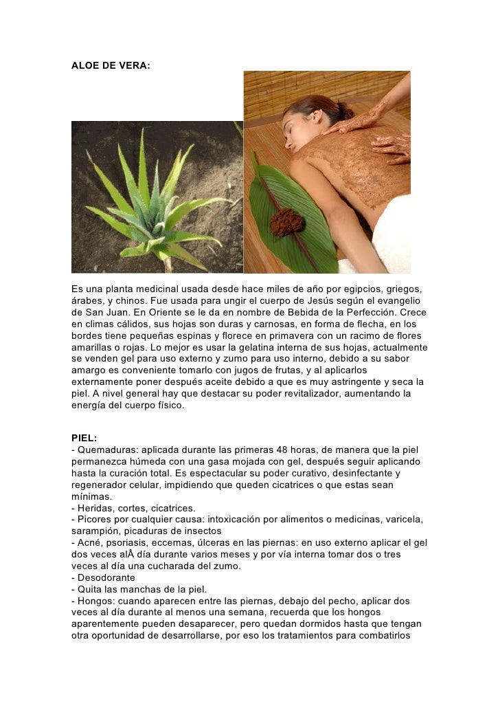 ALOE DE VERA:     Es una planta medicinal usada desde hace miles de año por egipcios, griegos, árabes, y chinos. Fue usada...