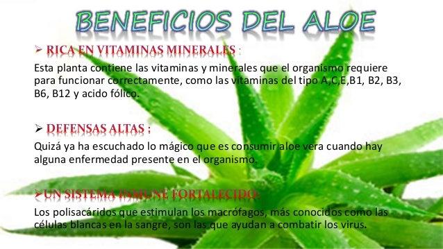 Diapositivas proyecto de s bila - Vitaminas para plantas de interior ...