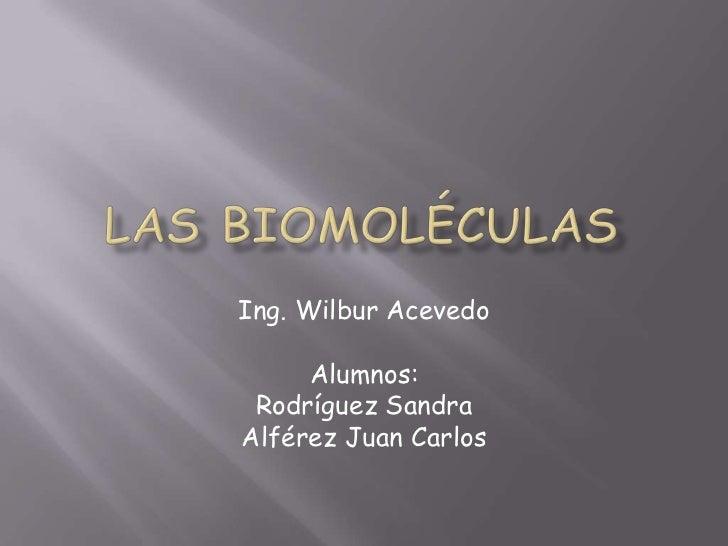 Las Biomoléculas<br />Ing. Wilbur Acevedo<br />Alumnos:<br />Rodríguez Sandra<br />Alférez Juan Carlos<br />