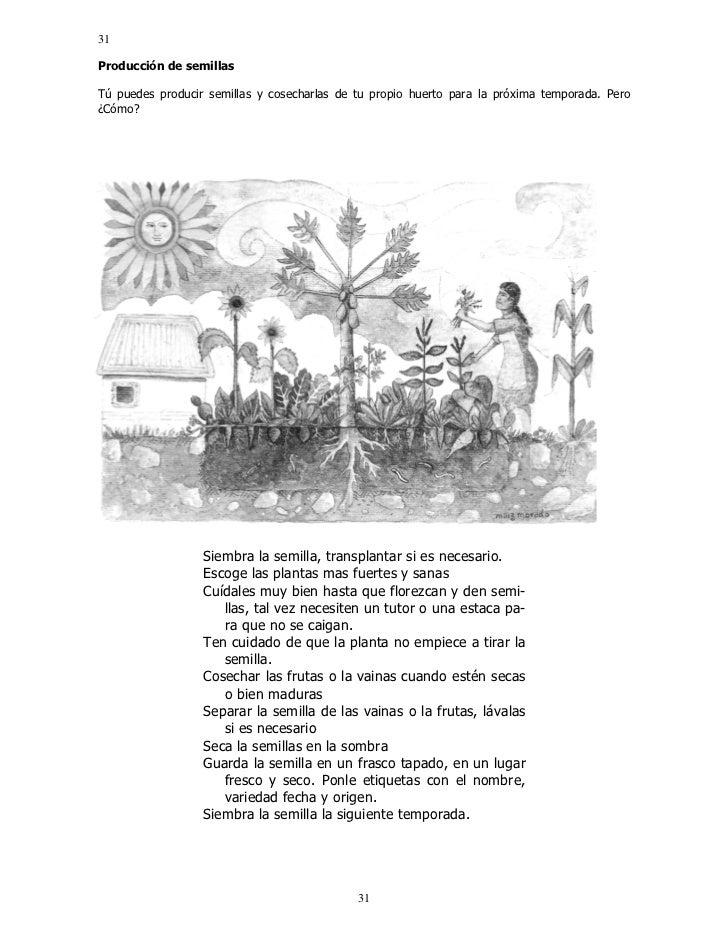 Las cañadas manual del cultivo biointensivo de alimentos