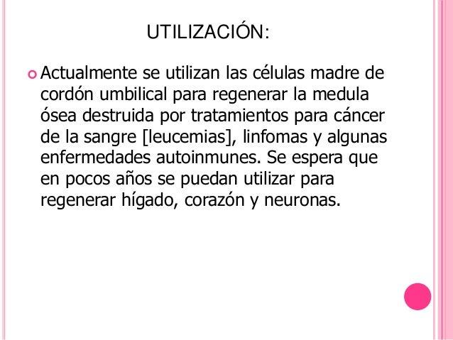 UTILIZACIÓN: Actualmente se utilizan las células madre de cordón umbilical para regenerar la medula ósea destruida por tr...