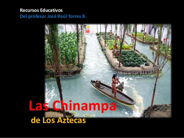 chinampas aztecas - photo #16