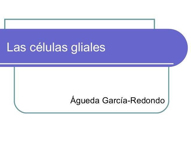 Las células gliales  Águeda García-Redondo