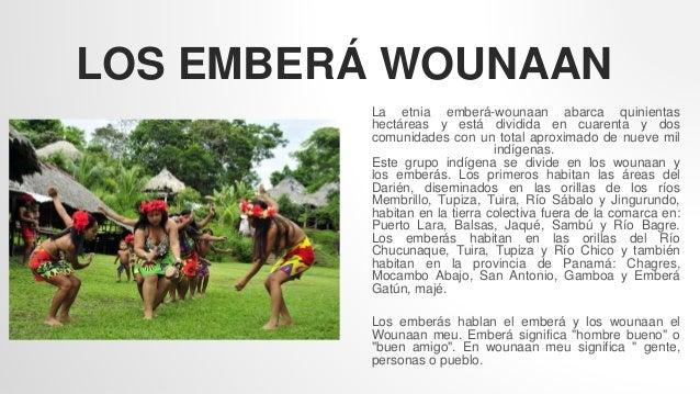 LOS EMBERÁ WOUNAAN La etnia emberá-wounaan abarca quinientas hectáreas y está dividida en cuarenta y dos comunidades con u...