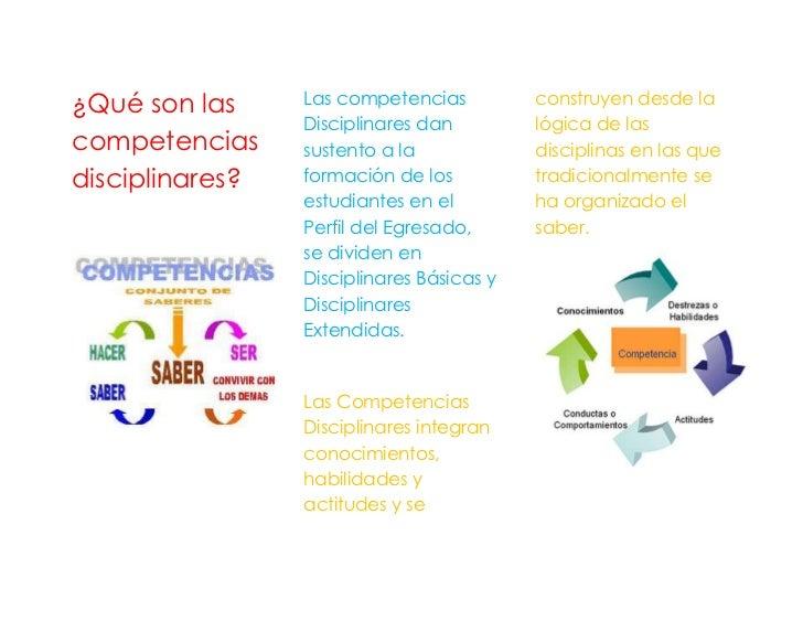 ¿Qué son las     Las competencias          construyen desde la                 Disciplinares dan         lógica de lascomp...