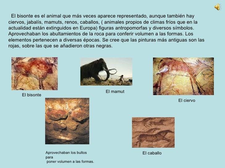 Q Es Bisonte Las Cueva De Al...