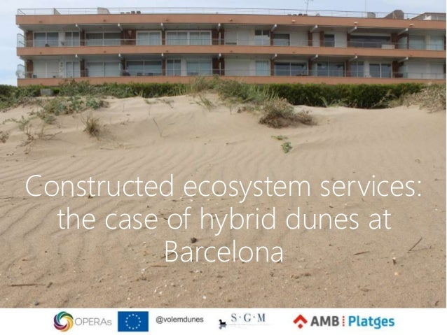 Constructed ecosystem services: the case of hybrid dunes at Barcelona