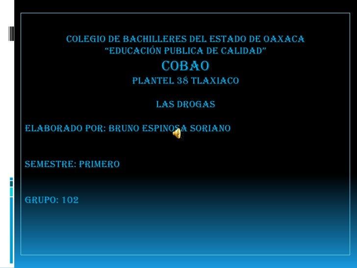 """Colegio de bachilleres del estado de Oaxaca<br />""""educación publica de calidad"""" <br />COBAO<br />Plantel 38 tlaxiaco <br /..."""