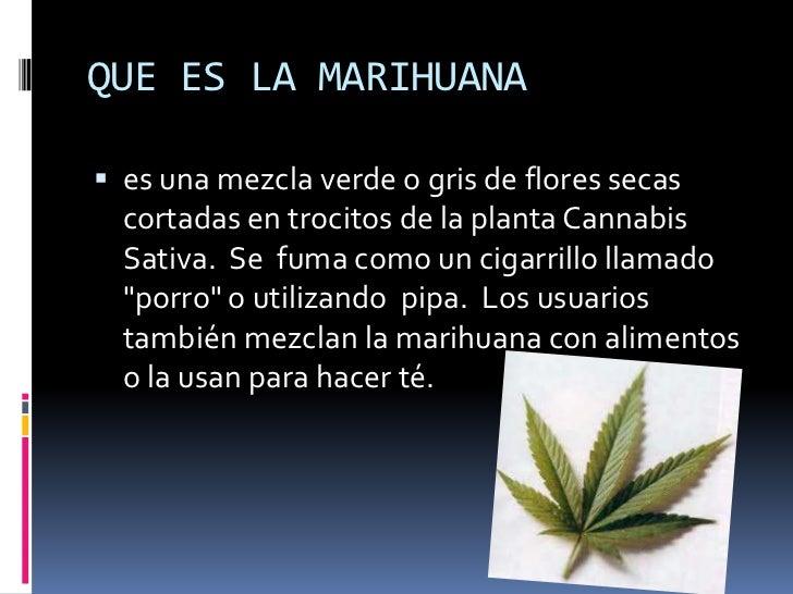 Las drogas for La zanahoria es una hortaliza