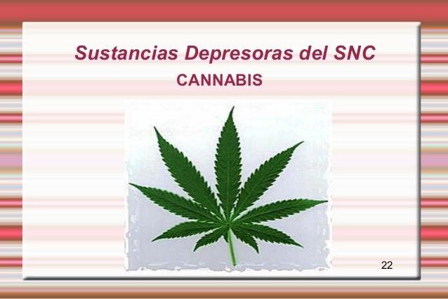 Sustancias Depresoras del SNC         CANNABIS                                22