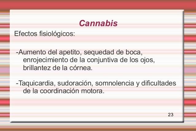 CannabisEfectos fisiológicos:-Aumento del apetito, sequedad de boca,  enrojecimiento de la conjuntiva de los ojos,  brilla...
