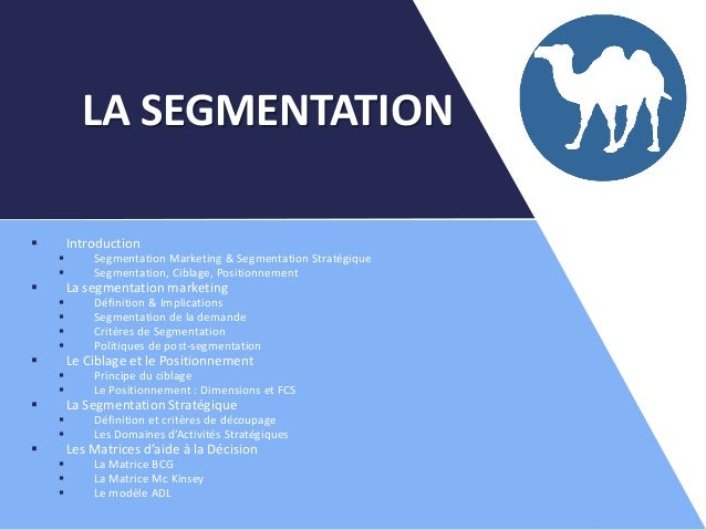  Introduction  Segmentation Marketing & Segmentation Stratégique  Segmentation, Ciblage, Positionnement  La segmentati...