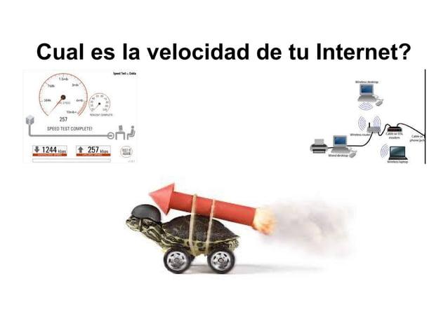 Cual es la velocidad de tu Internet?