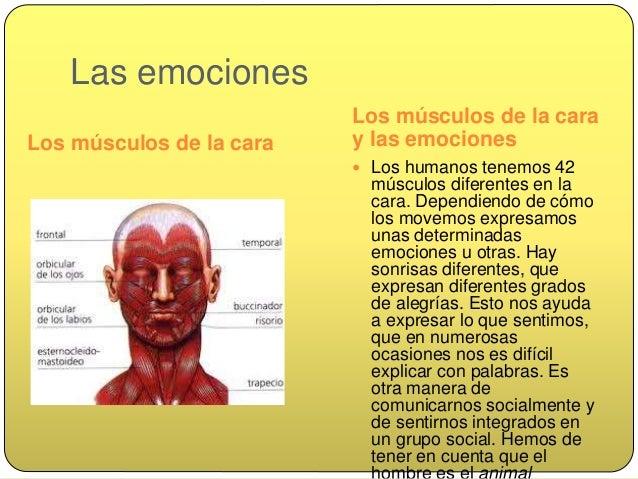 Las expresiones faciales  Las diferentes expresiones faciales son internacionales, dentro de diferentes culturas hay un l...