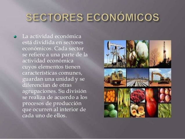 Las empresas según el sector económico Slide 2