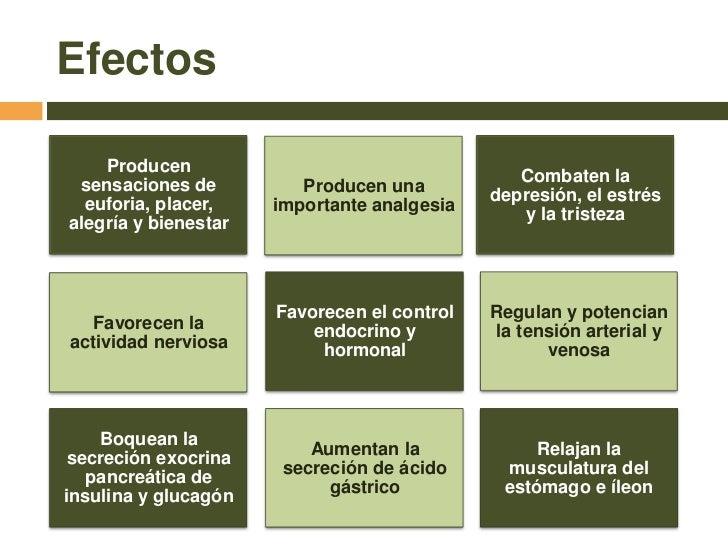 EFECTOS DE ENDORFINAS EPUB